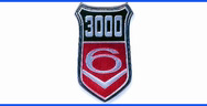 3000 V6 wing badge